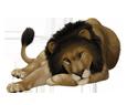Lion ##STADE## - coat 16019