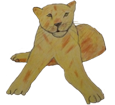 Lion ##STADE## - coat 16023