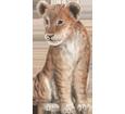Lion ##STADE## - coat 2